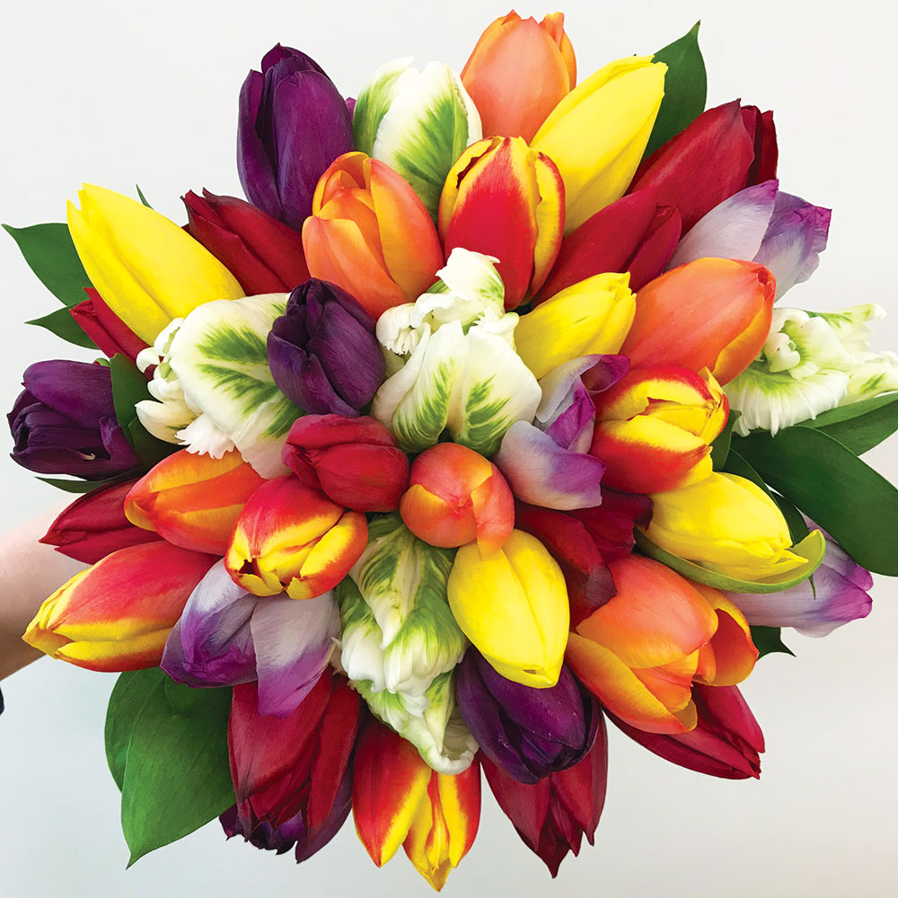 Studio Flowers Lisa Davis Florist Bespoke Flowers Kingsbridge Devon